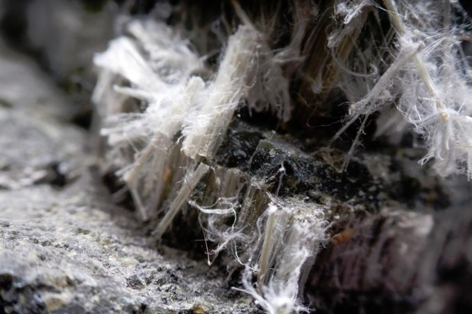 Asbestos Fibres Close Up