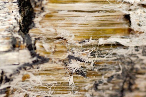 Close up of asbestos fibres